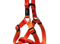 Rogs step-in harness large ORANGE